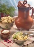 Almuerzo con pelmeni Foto de archivo libre de regalías