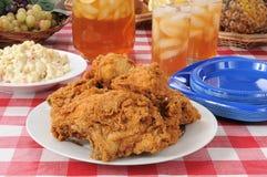 Almuerzo de la comida campestre del pollo de Friec Imagen de archivo