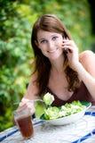 Almuerzo sano Fotografía de archivo libre de regalías