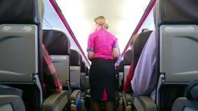 Almuerzo y bebidas de la porción de la presentadora de la línea aérea a los pasajeros del vuelo Viaje en el extranjero metrajes