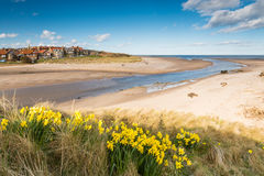 Alnmouth beach in spring Stock Images