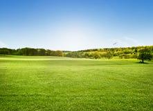 Alnwick betar, Northumberland Arkivfoto