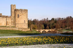 Free Alnwick Castle Stock Photos - 2129373