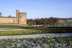 Free Alnwick Castle Royalty Free Stock Images - 2129389