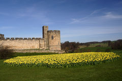 Alnwick castle Stock Photography