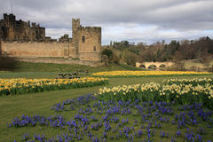 Alnwick castle Royalty Free Stock Images