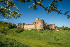 Alnwick Castle, England Stock Photography