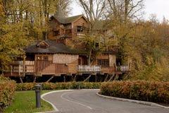 alnwick höstlig trädgårds- treehousesikt royaltyfri bild