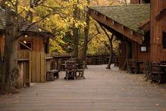 alnwick höstlig trädgårds- treehousesikt fotografering för bildbyråer