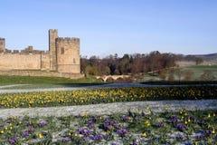 alnwick slott Royaltyfria Bilder