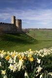 alnwick slott Arkivfoton