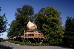 alnwick trädgårds- treehouse royaltyfri foto