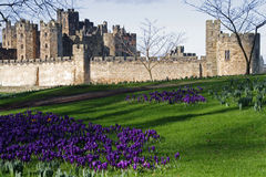 alnwick zamku Obrazy Royalty Free