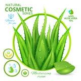 Aloès Vera Natural Cosmetics Poster illustration stock