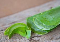 Alo fresco verde vera su struttura di legno Immagine Stock