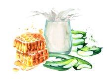 Aloe Βέρα με το μέλι και το ποτήρι του γάλακτος Συρμένη χέρι απεικόνιση Watercolor Απεικόνιση αποθεμάτων