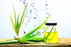 Aloe Βέρα σε ένα γυαλί, Aloe Βέρα Splash Στοκ εικόνες με δικαίωμα ελεύθερης χρήσης