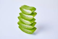 Aloe Βέρα φετών Στοκ Φωτογραφίες