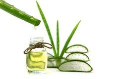 Aloe ουσιαστικό πετρέλαιο της Βέρα στα τροπικά φύλλα Στοκ Εικόνες