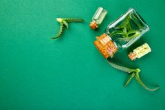 Aloe πετρέλαιο της Βέρα στο μπουκάλι γυαλιού και πετσέτα για τη SPA στοκ εικόνες