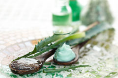 Aloe προϊόντα φροντίδας δέρματος Στοκ εικόνα με δικαίωμα ελεύθερης χρήσης
