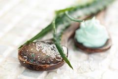 Aloe προϊόντα φροντίδας δέρματος Στοκ Φωτογραφία