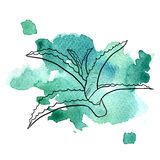 Aloe στο υπόβαθρο watercolor Στοκ Εικόνες