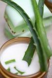 Aloe φύλλα της Βέρα, χειροποίητο σαπούνι Στοκ Εικόνα