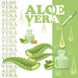 Aloe φύλλα της Βέρα, φέτες με το σιφώνιο και πτώσεις Στοκ Φωτογραφία