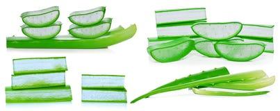 Aloe φύλλο και φέτες της Βέρα που απομονώνονται στο άσπρο υπόβαθρο Στοκ Εικόνες