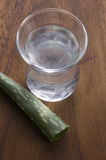 Aloe χυμός της Βέρα με τα φύλλα Στοκ Φωτογραφίες