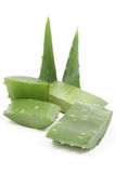 Aloe Immagini Stock Libere da Diritti