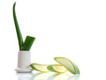 Aloe affettato Immagini Stock