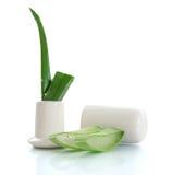 Aloe affettato Fotografie Stock