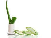 Aloe affettato Immagine Stock