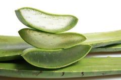 Aloe affettato, isolato su fondo bianco Immagini Stock