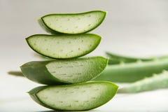 Aloe affettato vera con le foglie Fotografia Stock Libera da Diritti