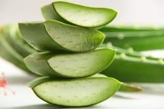 Aloe affettato vera con le foglie Immagine Stock