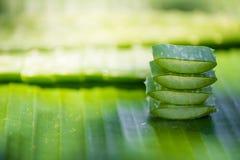 Aloe affettato vera sulla foglia verde della banana Fotografie Stock