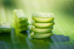 Aloe affettato vera sulla foglia verde della banana Immagini Stock