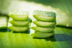 Aloe affettato vera sulla foglia verde della banana Fotografia Stock