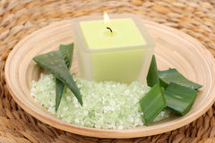 Aloe bath salt Royalty Free Stock Photos