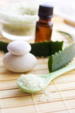 Aloe bath salt and leaves Stock Image