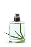 Aloe and bottle with perfume Royalty Free Stock Photography