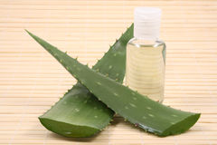 Aloe cosmetic Royalty Free Stock Photography