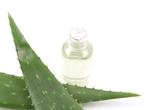 Aloe cosmetic Stock Photography
