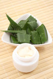 Aloe cream Stock Images