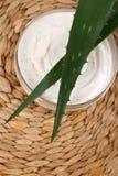 Aloe cream stock photo