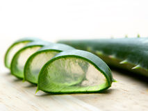 Aloe cut stock image