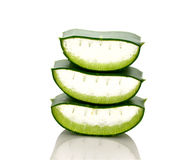 Aloe Cut stacked on a white background Stock Images